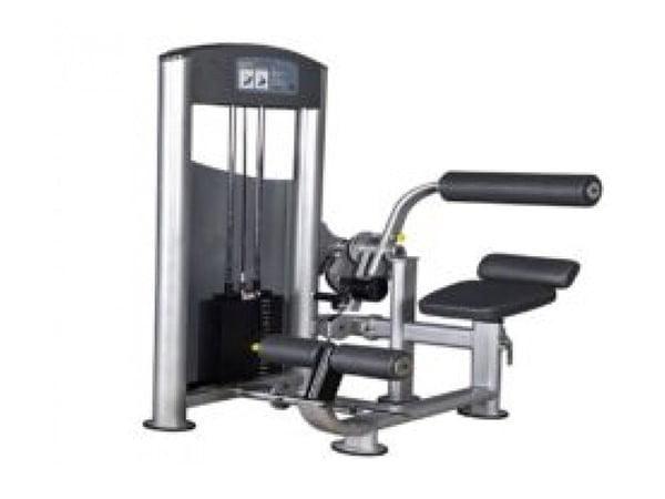 Facile Heavy Duty Commercial Abdominal Machine